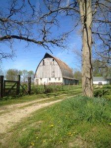 Barn - Keely's photos