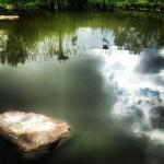 lake shot by Lauren