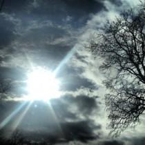sunlight - Lauren