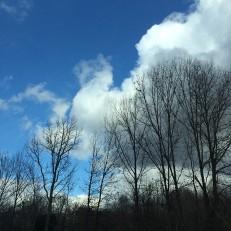 Blue Skies - Lauren MAR 2014