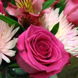 Angela - Flowers 2014