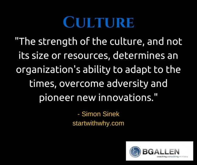 Sinek on culture